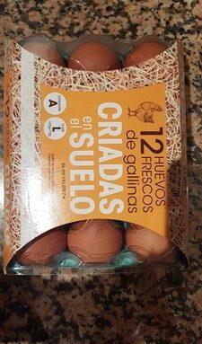 12 Huevos Frescos de gallinas Criadas en el Suelo