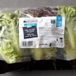 Baby mix coeur de salade