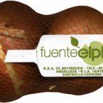 """Cebollas """"Fuente El Pino"""""""