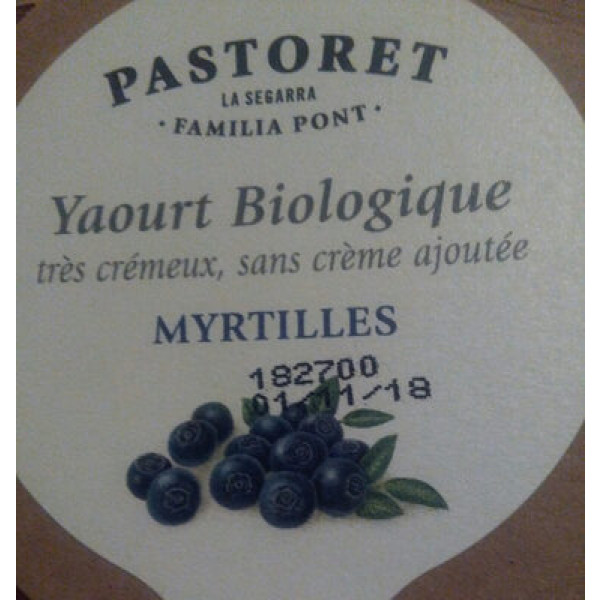 Pastoret Yogur Ecológico Con Arándanos