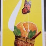 Verbena orange infusion special t