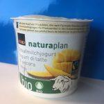 Yogourt au lait de bebris Mangue