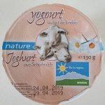 Yogourt au lait de brebis nature